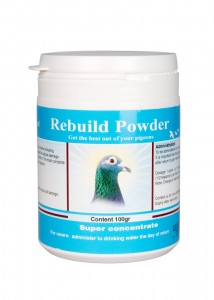 REBUILD POWDER.jpg